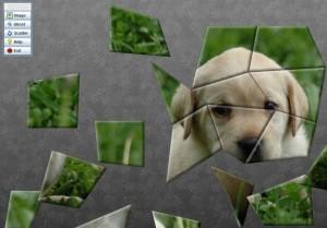 Creare puzzle con foto online gratis