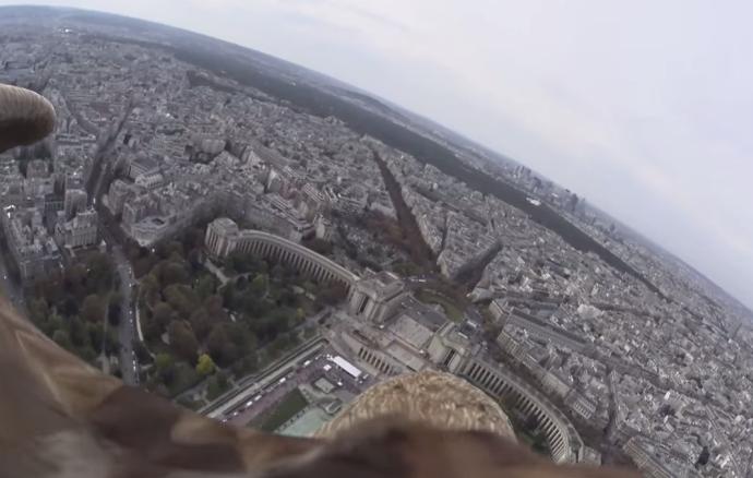 Parigi video